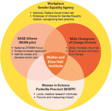 Gender equity programs diagram