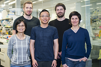 CRISPR team at the Institute