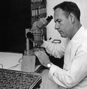 Don Metcalf at the microscope