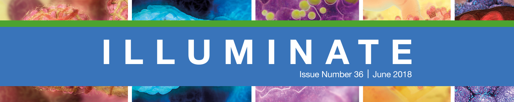 Illuminate newsletter index page, June 2018