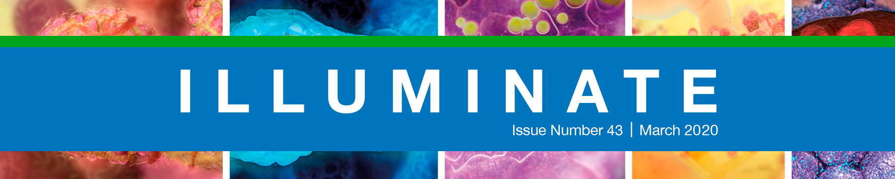Illuminate newsletter index page, March 2020