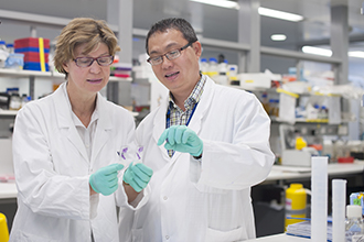 Jane Visvader and Nai Yang Fu in the laboratory