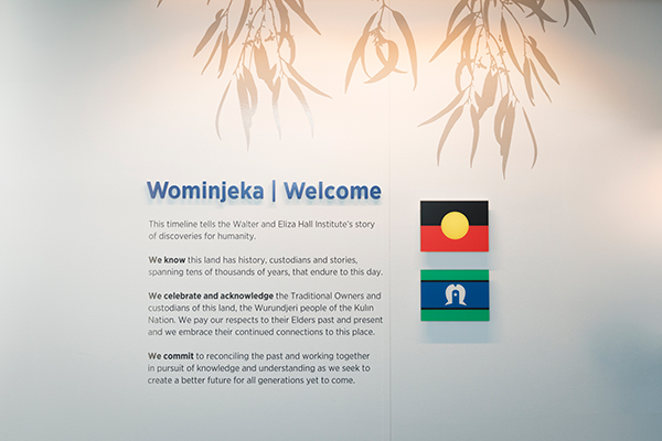 Acknowledgement of country wall panel