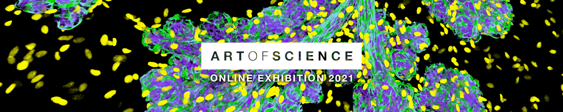 Art of Science 2021 promotion