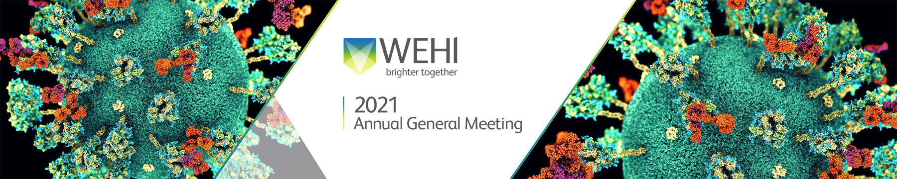 Annual General Meeting 2021 promotional banner