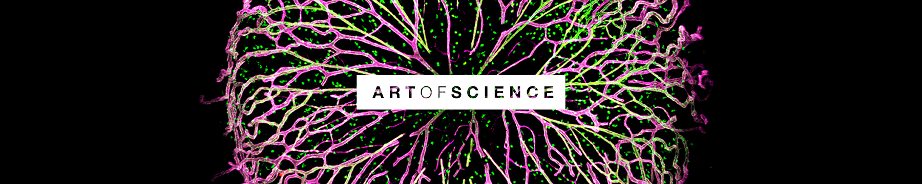 Art of Science 2017 event promotion