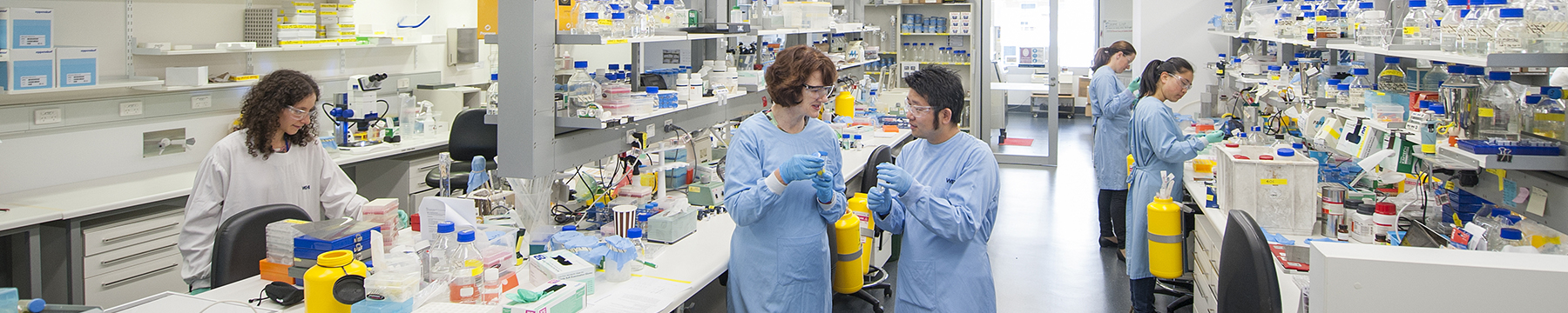 Scientists working in Associate Professor Joan Heath's laboratory