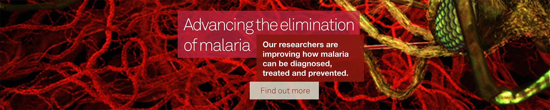 Advancing the elimination of malaria, find out more