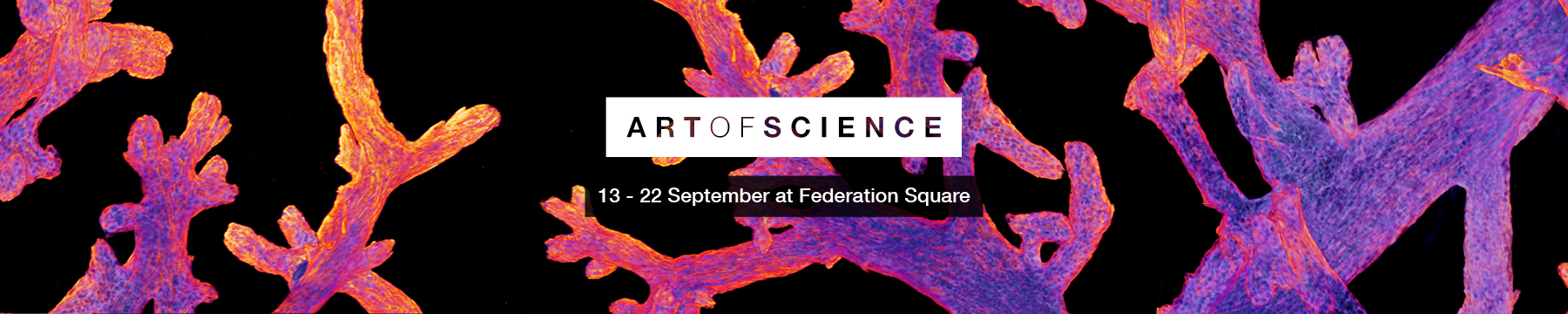 Art of Science 2019 event promotion