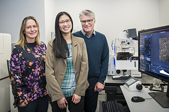 Dr Kelly Rogers, Dr Kim Pham and Professor Phil Hodgkin
