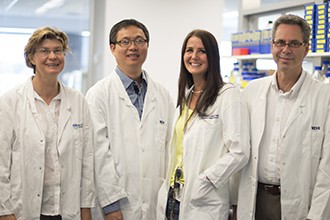 Jane Visvader, Nai Yang Fu, Anne Rios, and Geoff Lindeman standing in a lab