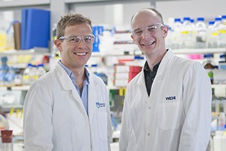 Dr Justin Boddey and Dr Brad Sleebs in a lab