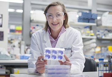 Professor Gabrielle Belz in the laboratory
