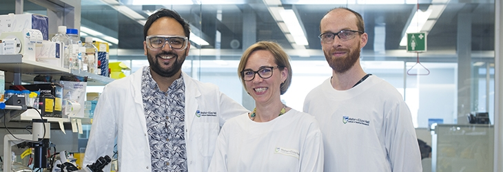 Dr Shalin Naik with colleagues in the laboratory