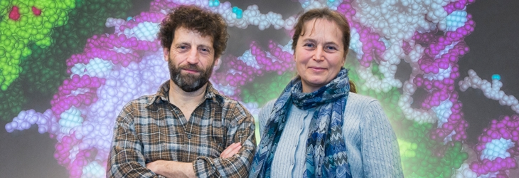 Associate Professor Tim Thomas and Associate Professor Anne Voss