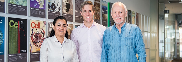 Three diabetes researchers smiling at camera