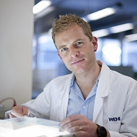 Associate Professor Justin Boddey in the lab