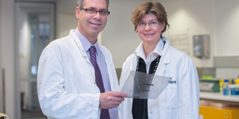 Professors Geoff Lindeman and Jane Visvader in lab