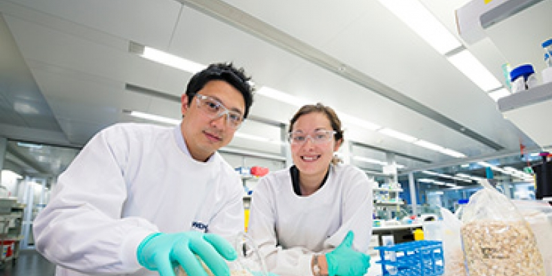 Dr Jason Tye-Din and Dr Melinda Hardy in lab