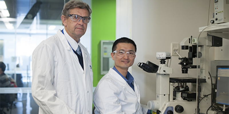 Professor Tony Burgess and Dr Chin Wee Tan