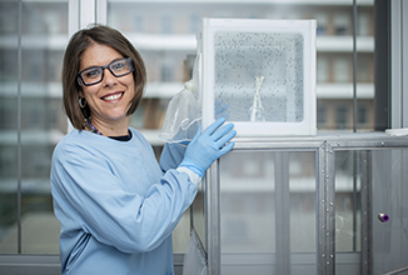 Female researcher with white box containing mosquitoes