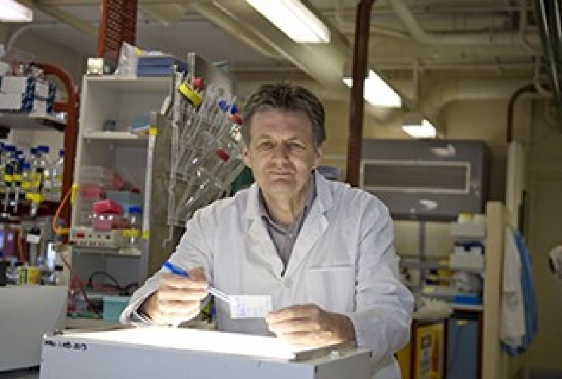 Alan Cowman in a lab looking at a protein blot over a lightbox