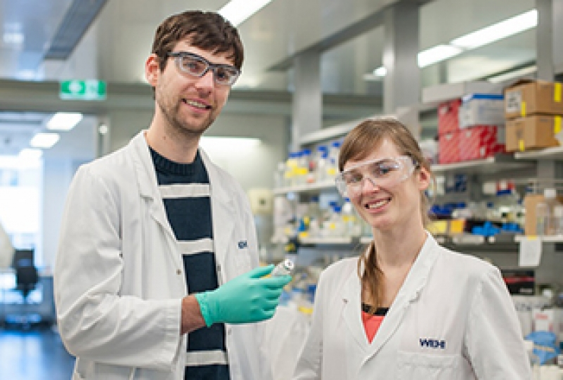 Dr Alex Delbridge and Dr Stephanie Grabow in the laboratory