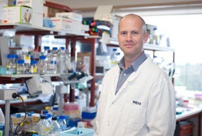Dr Ben Kile standing in a laboratory