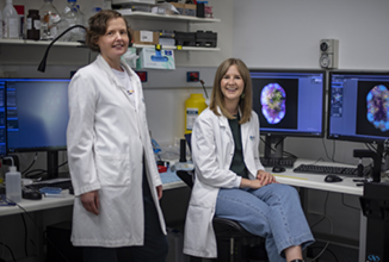 Researchers Dr Joanna Groom and Brigette Duckworth in an imaging laboratory