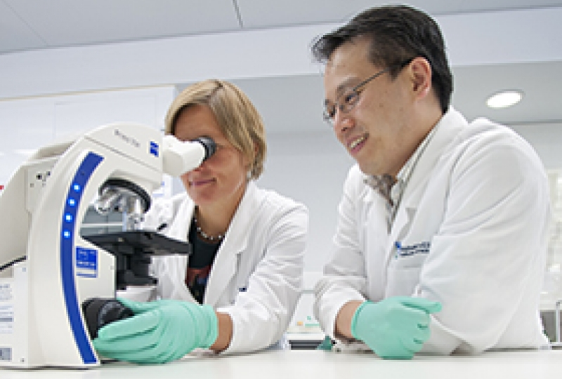 Haematology researchers at microscope