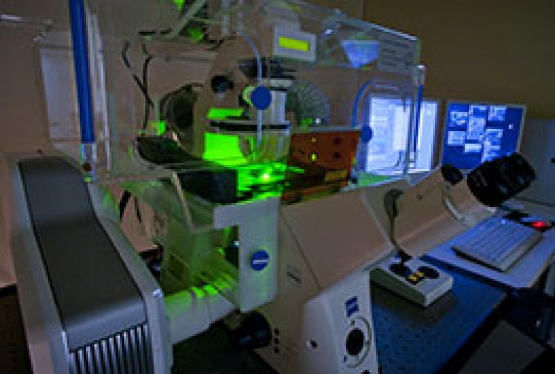 Zeiss LSM5Live Confocal