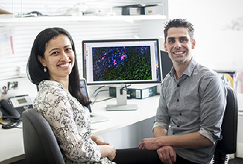Two researchers in an office