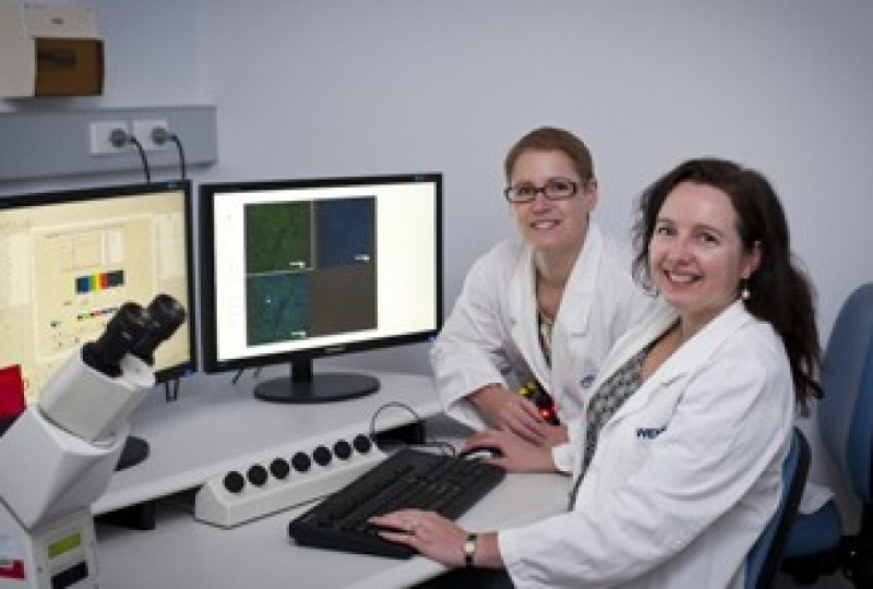 Dr Kylie Mason and Dr Lorraine O'Reilly in front of a computer