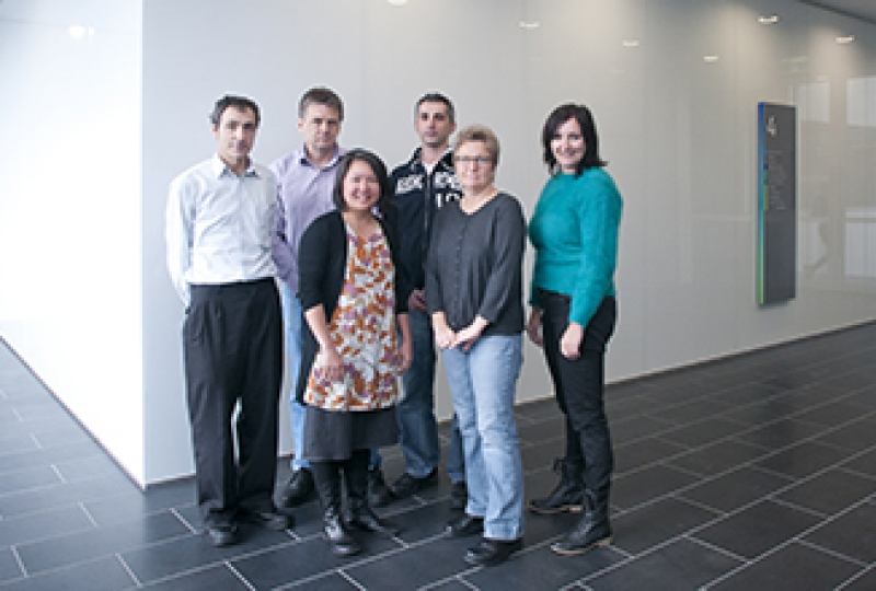 Malaria program staff