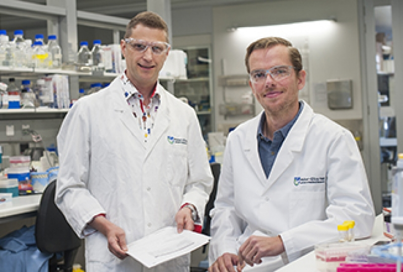Dr Marc Pellegrini and Dr Greg Ebert in the laboratory