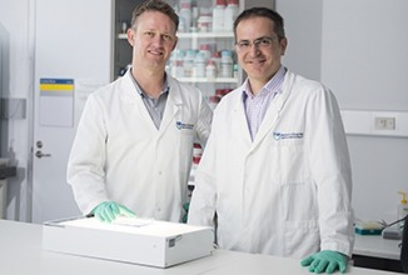 Dr Peter Czabotar and Dr Guillaume Lessene in a laboratory