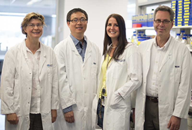 Dr Visvader, Dr Fu, Dr Rios and Dr Lindeman pose for a group photo in the lab