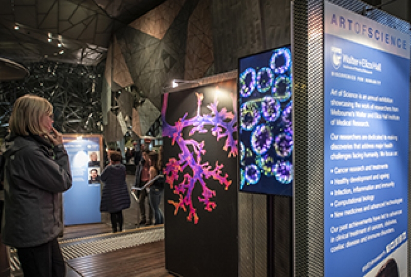 Visitors at the Art of Science 2019 exhibition