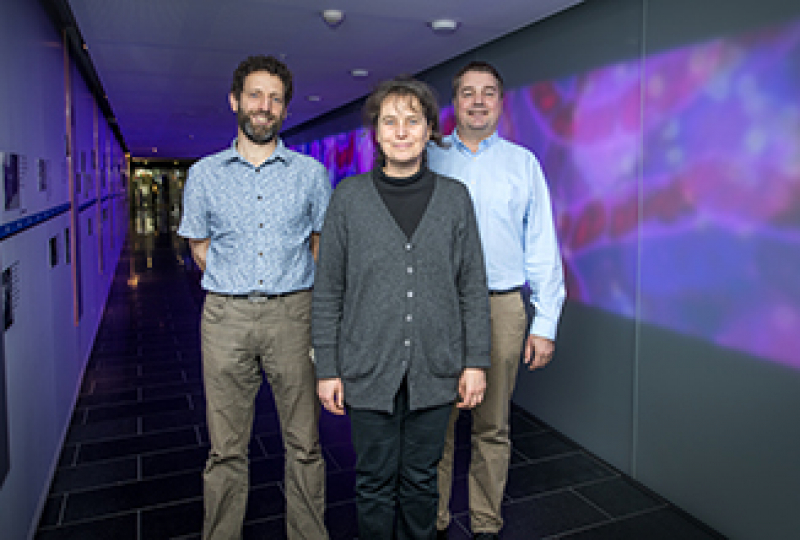 Three researchers standing in WEHI's galleria