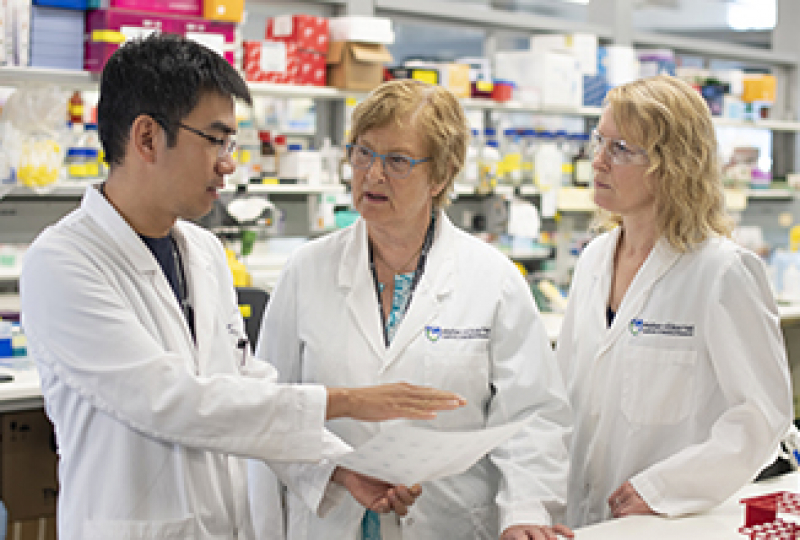 Researchers talking in a laboratory