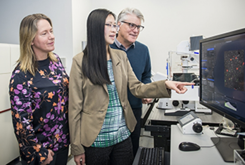Dr Kelly Rogers, Dr Kim Pham and Professor Phil Hodgkin in the imaging laboratory