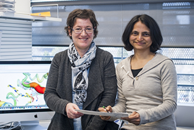 Dr Isabelle Lucet and Dr Onisha Patel with a computer