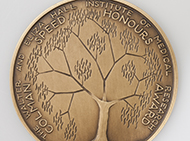 Bronze medal for best honours student