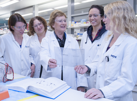 Suzanne Cory in lab with team