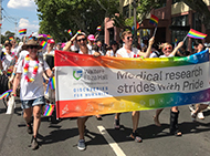 WEHI employees at Midsumma Pride March